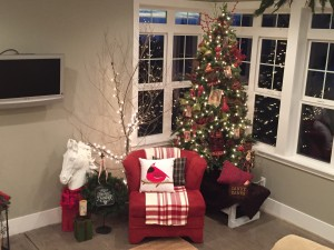 We have 10' ceilings in the basement and a lot of tall windows. I love having the tree reflect light off the windows.