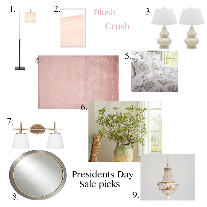 Presidents Day Sale picks